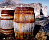 La cultura vinícola de Lanzarote