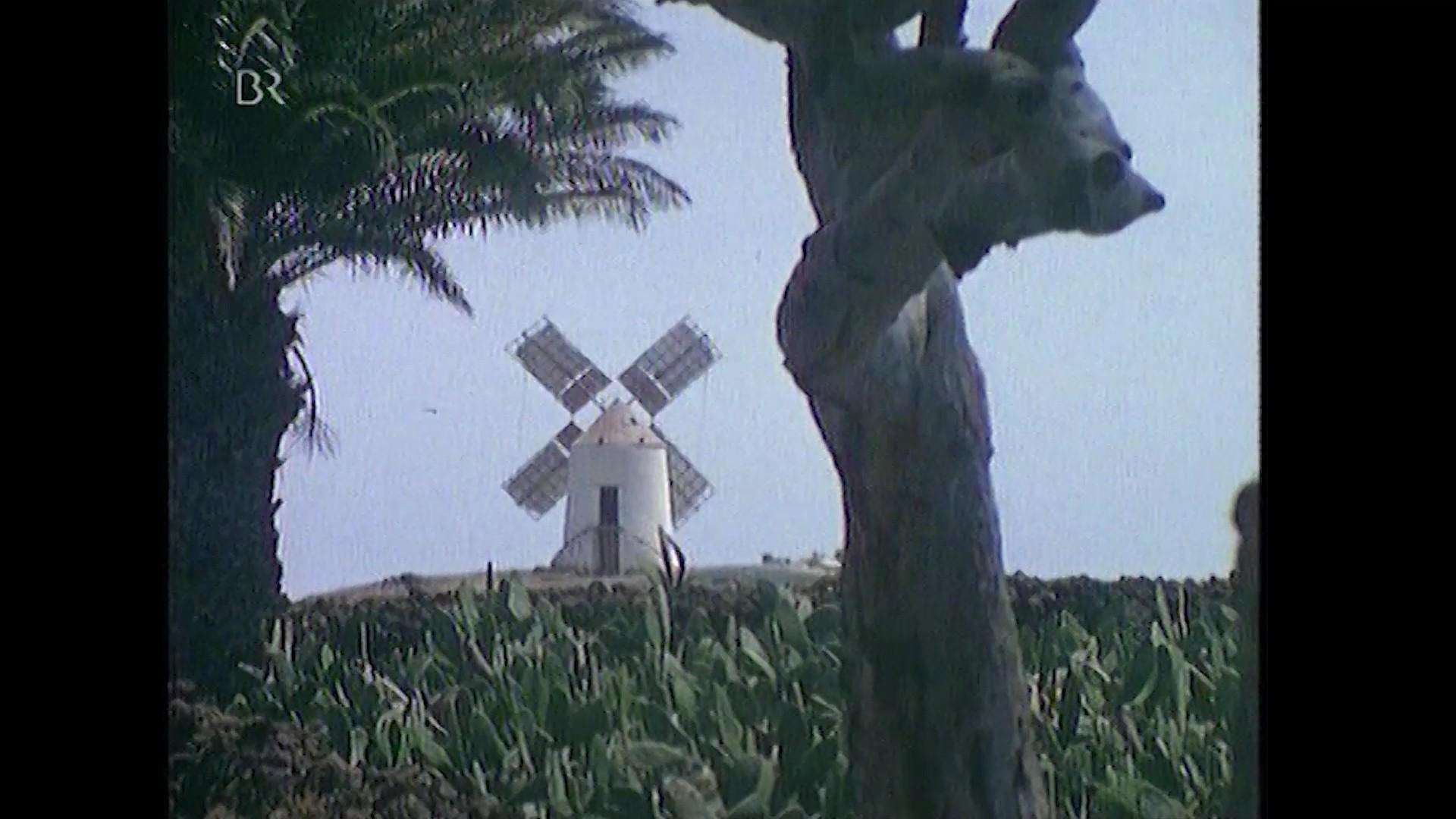 Escenas rurales de Lanzarote (1974)