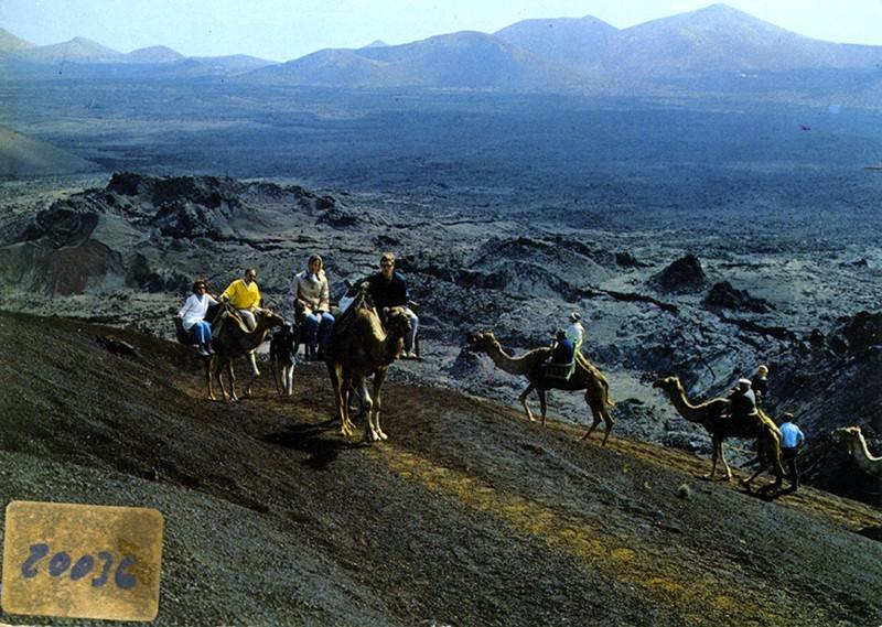 Ruta de los camellos VII