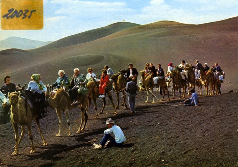 Ruta de los camellos VIII