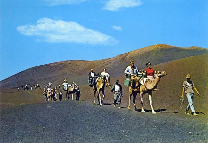 Ruta de los camellos XI