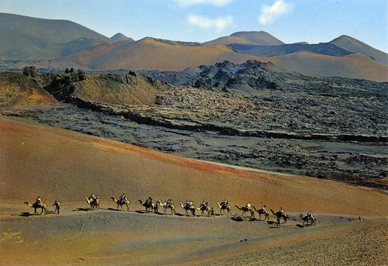 Ruta de los camellos XIII