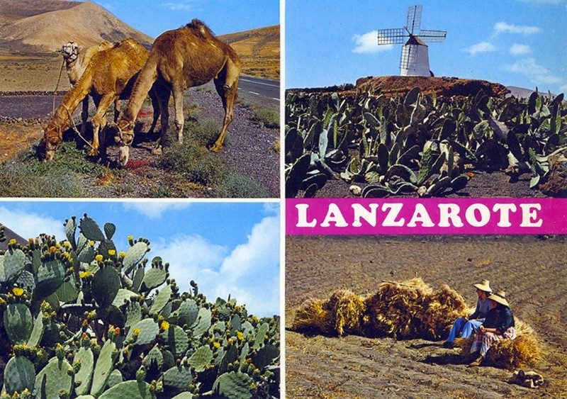 Postal Lanzarote XXVI