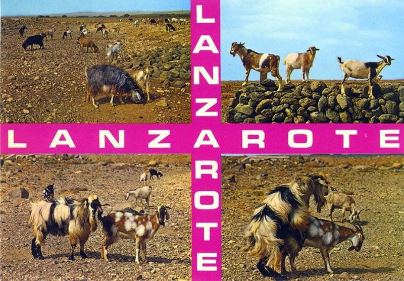 Postal Lanzarote XXVII