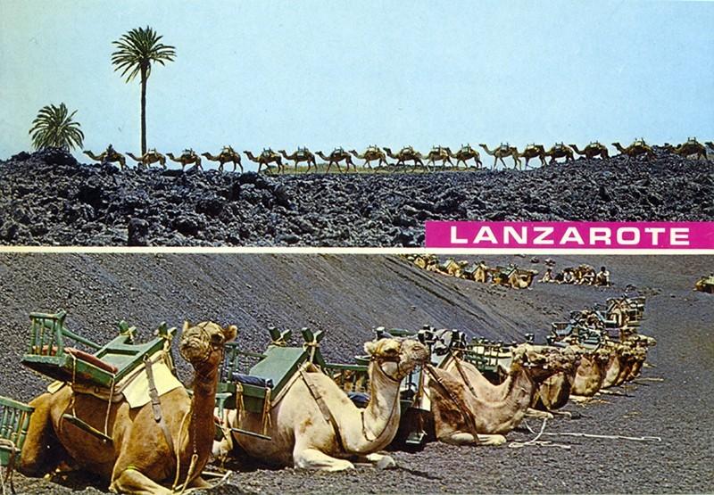 Postal Lanzarote XXVIII
