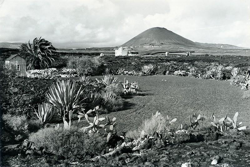 Paisaje insular II