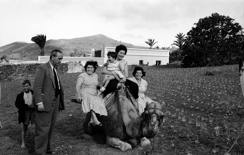 Familia Navarro Acosta IV