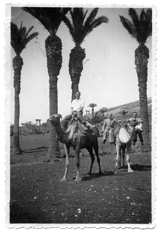 Amigos montados a camello