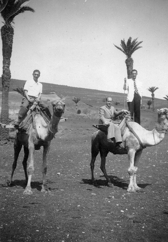Amigos montados a camello II