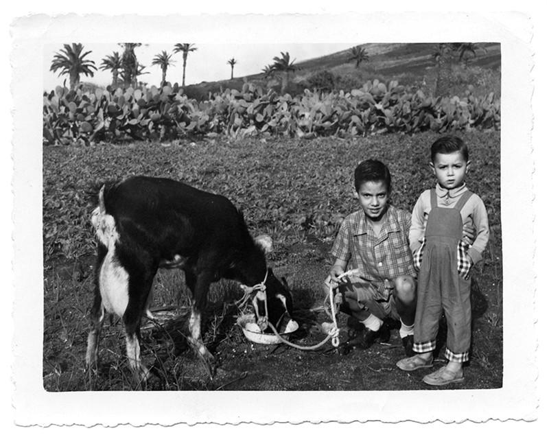 Niños junto a una cabra