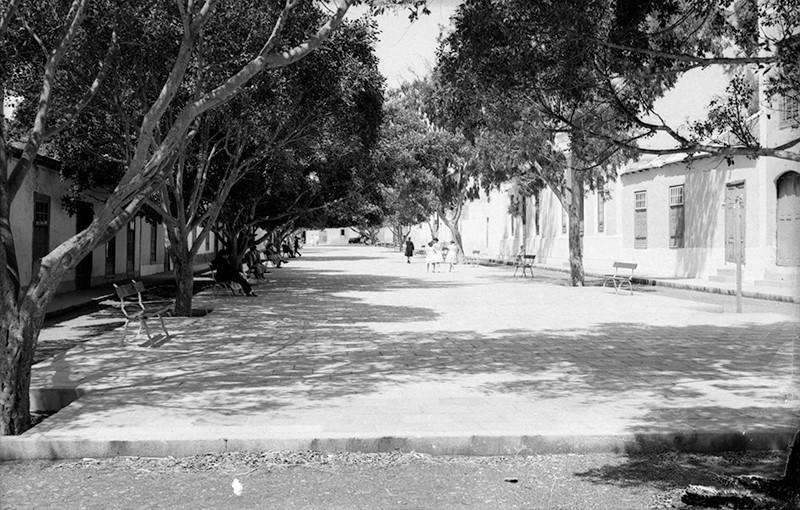 Plaza de Haría V