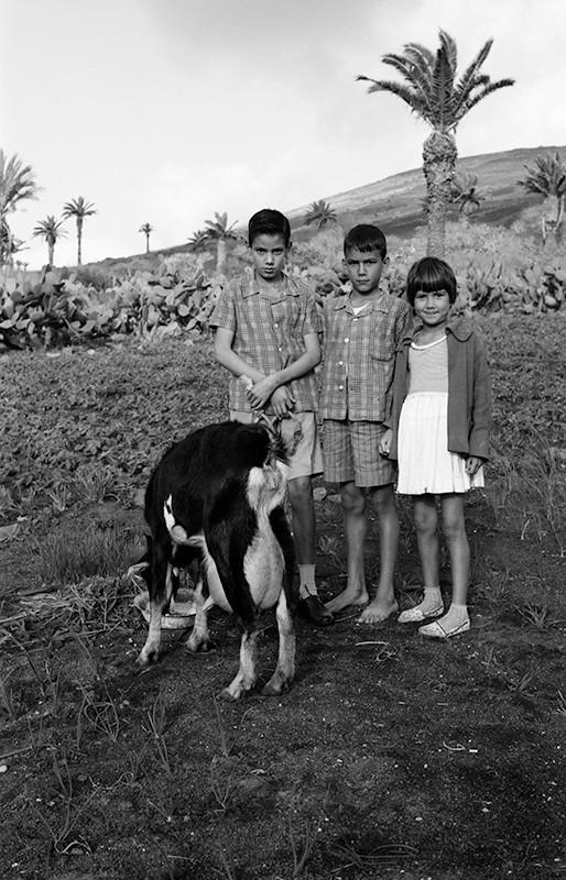 Niños y cabra