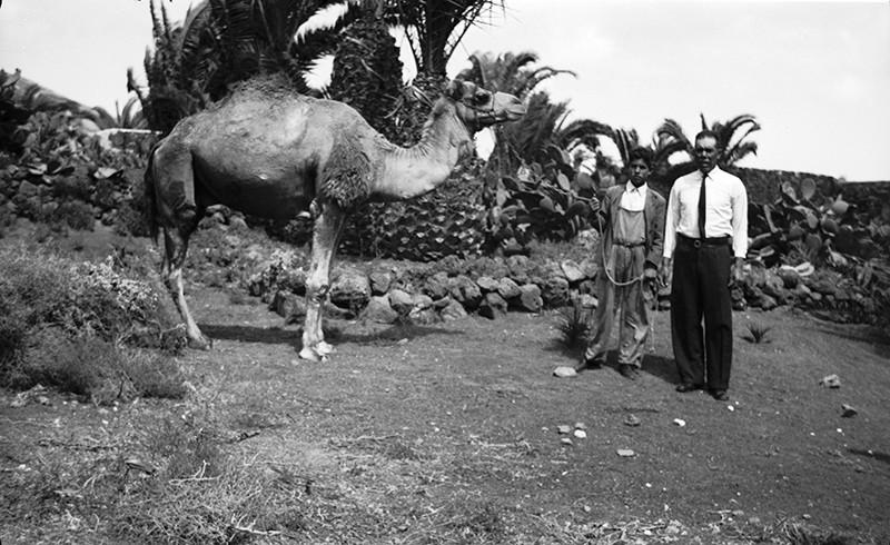 Camello y dueños