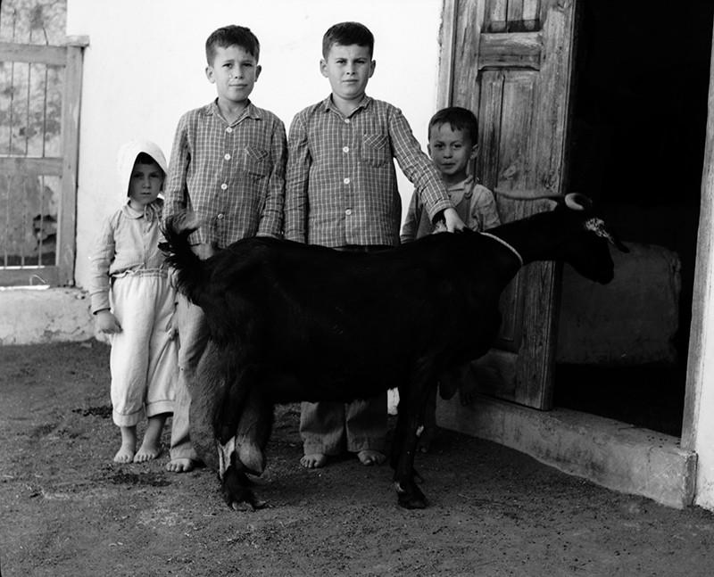 Niños posando con una cabra