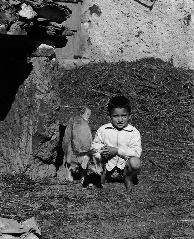 Niño con un cabrito