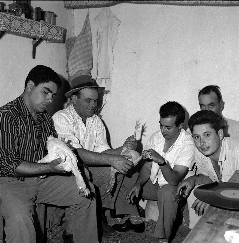 Amigos de fiesta en Máguez II