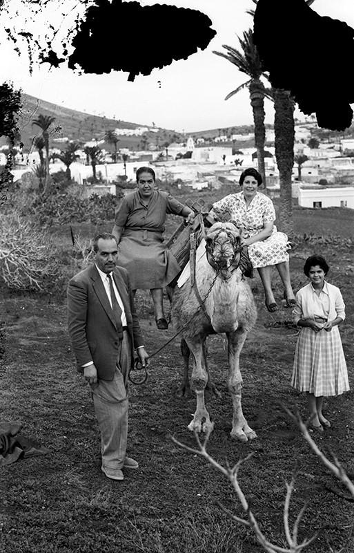 Sobre un camello