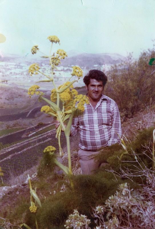 Miguel Peña VI