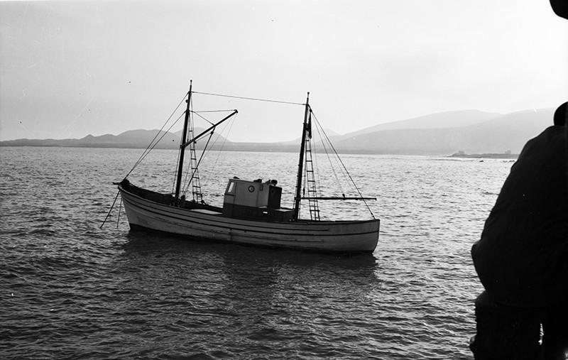 'María Esther' III