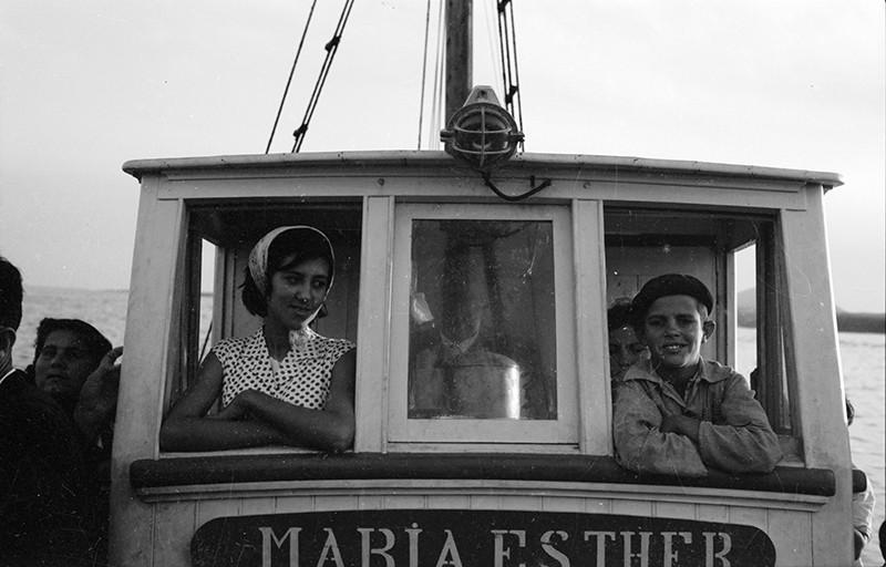 'María Esther' VI