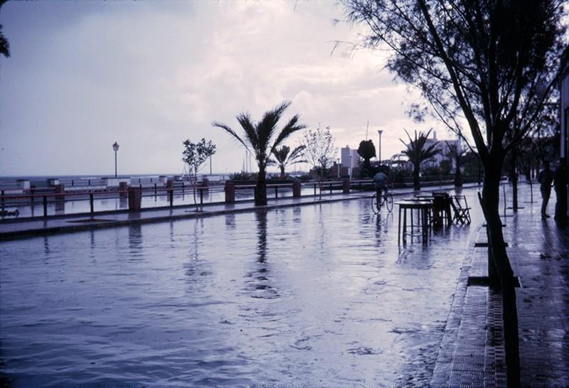 Día de lluvia en la avenida