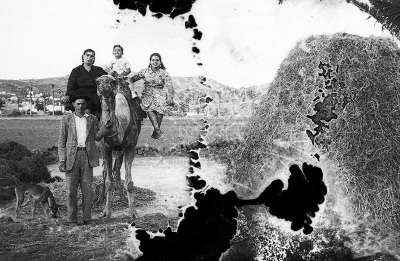 Familia de Haría II