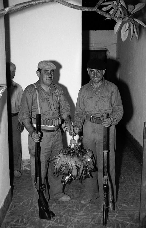 Cacería de palomas y perdices I