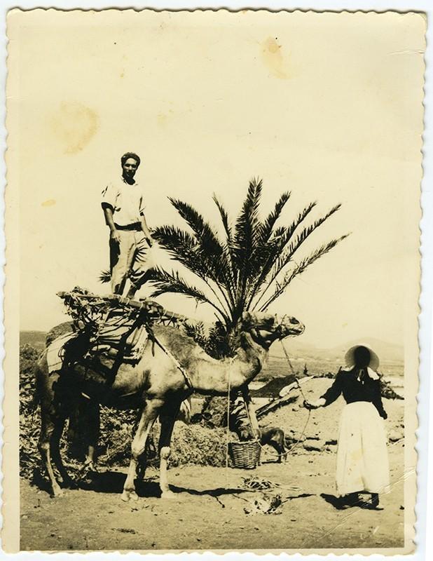 Campesinos cargando un camello VI