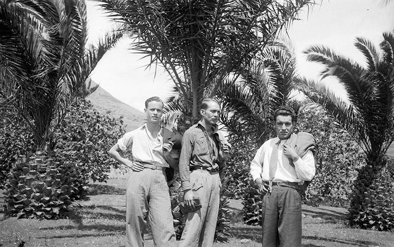 Amigos en el palmeral