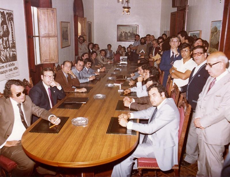 Constitución del Cabildo en 1979 VI