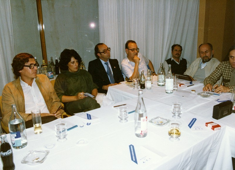 Gestación de agrupaciones y partidos insulares IX