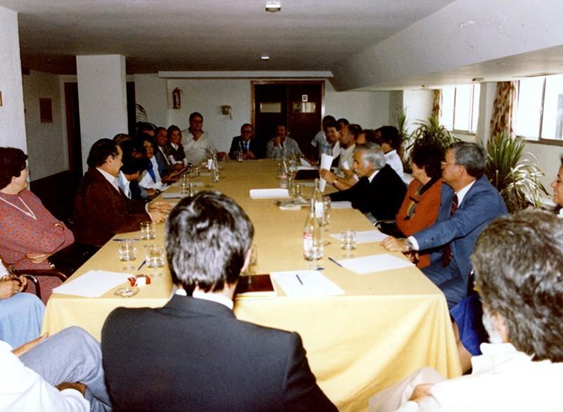 Gestación de agrupaciones y partidos insulares XII