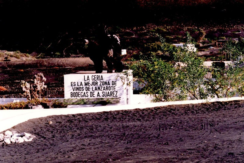 Bodegas La Geria II