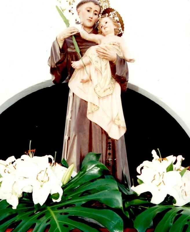 Fiestas de San Antonio en Güime II