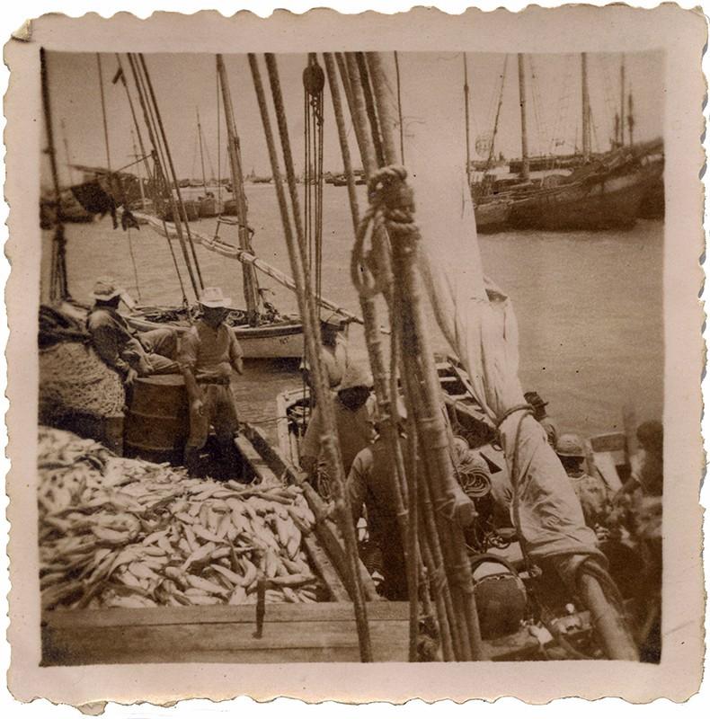 Barco de Fefo IX