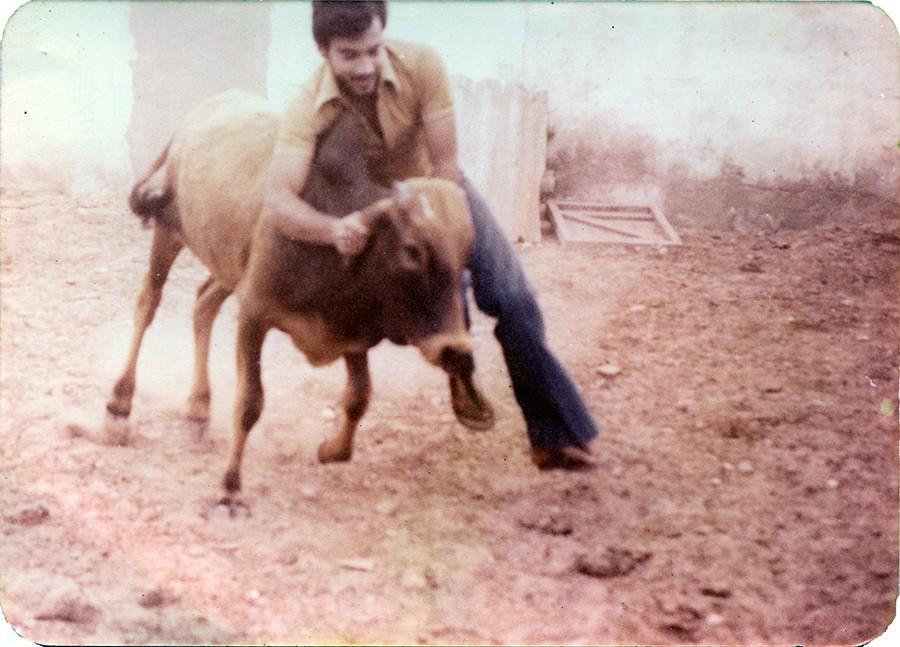 Jugando con la vaquilla