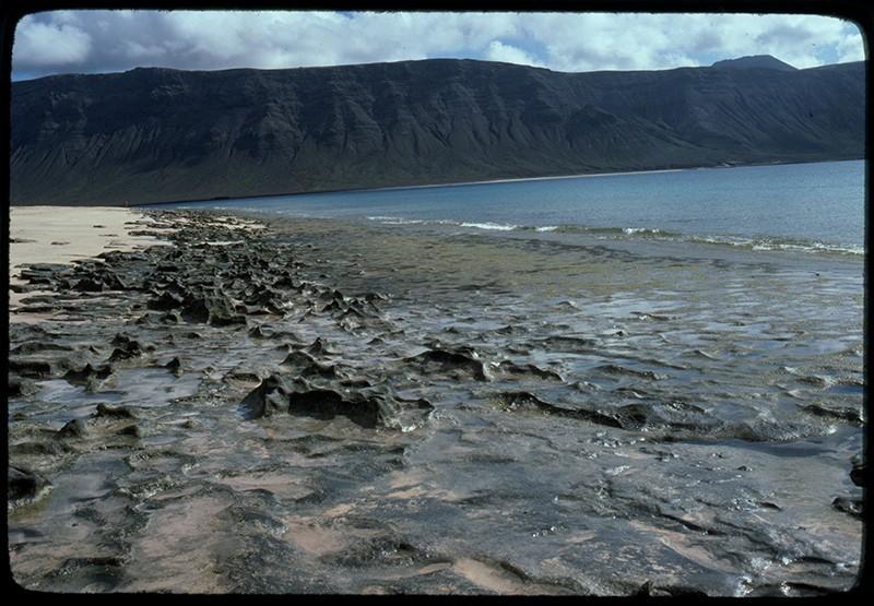 Playa del Salao