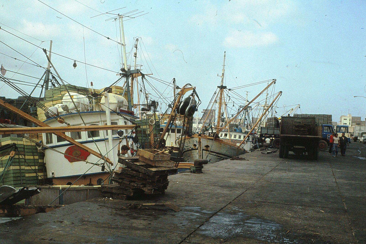 Pesqueros de Arrecife IV