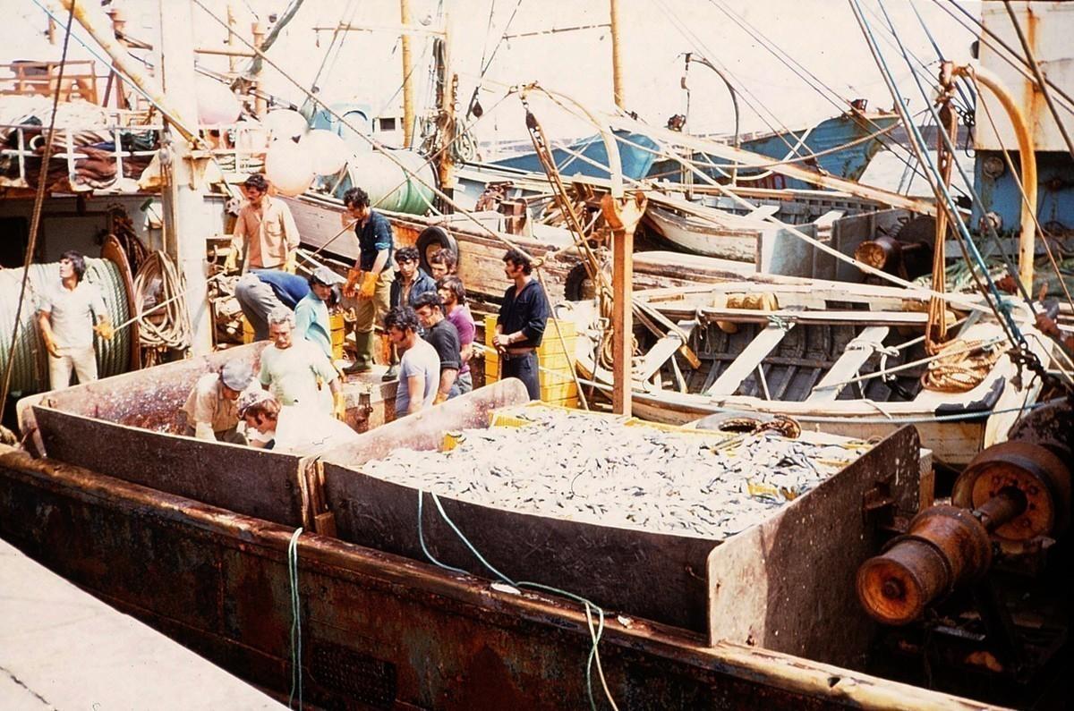 Pesqueros de Arrecife VI