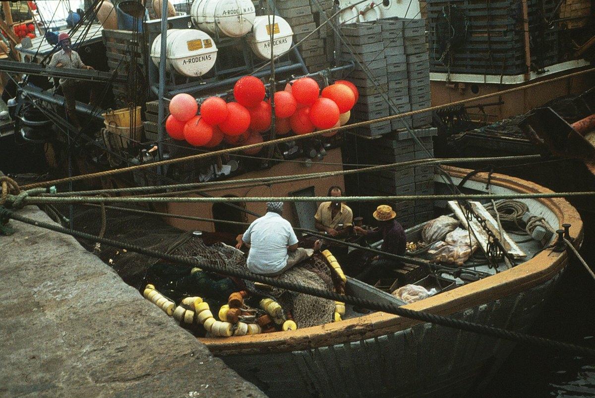 Pesqueros de Arrecife VII