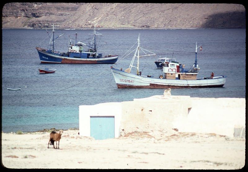 Barcos y cabra