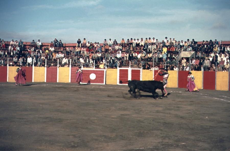 Corrida de toros en Lanzarote IV