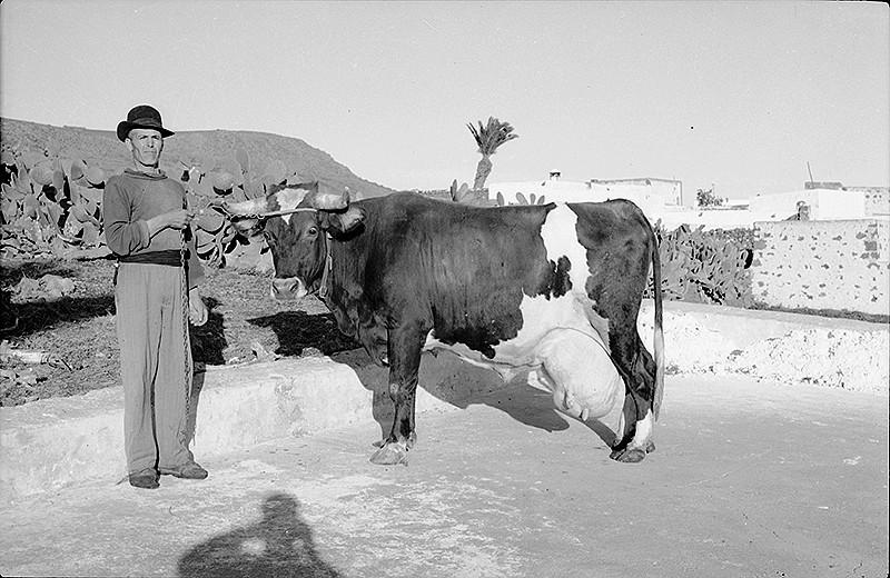 Agricultor de Máguez