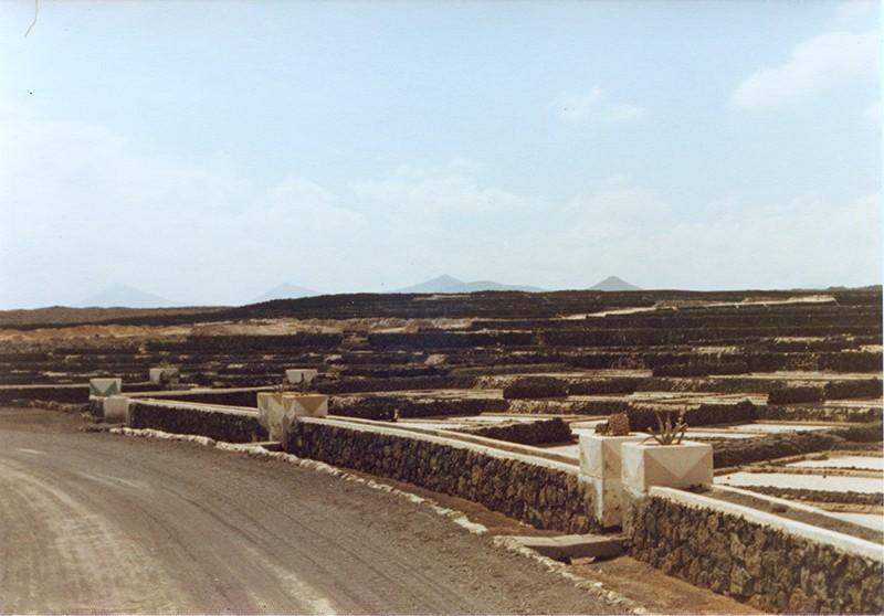 Salinas de Las Caletas I