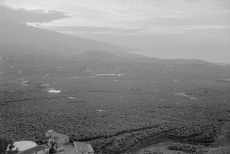 Visita a Tenerife VI