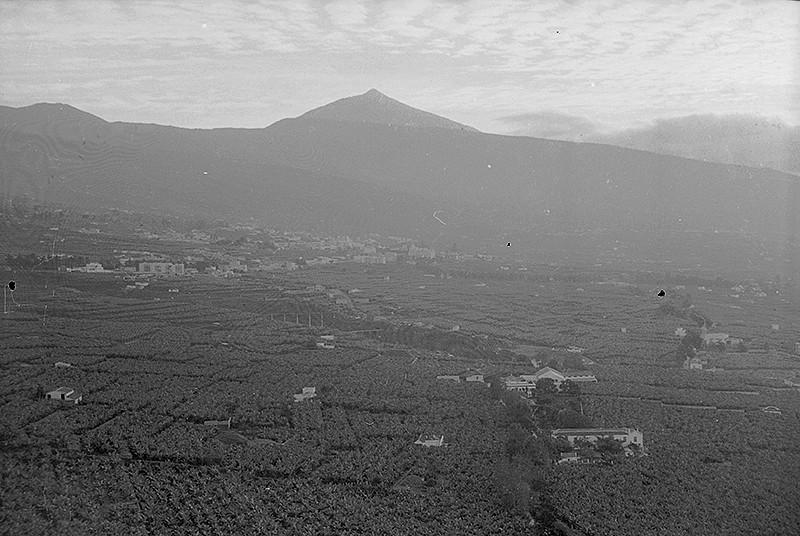 Visita a Tenerife VII