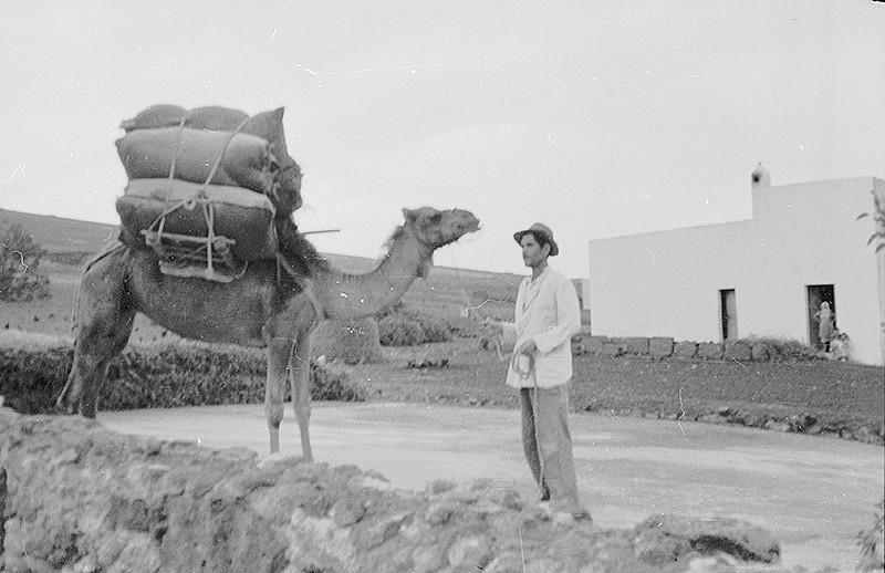Campesino con camello