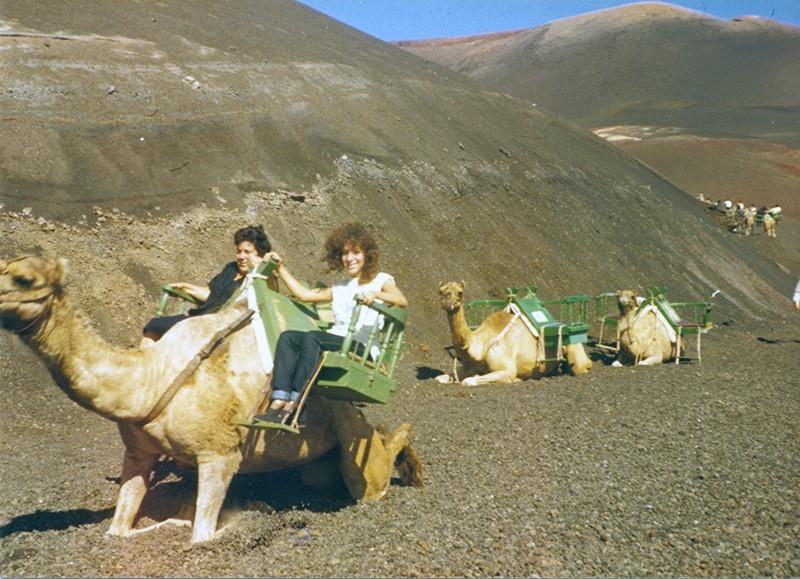 Paseo en camello I