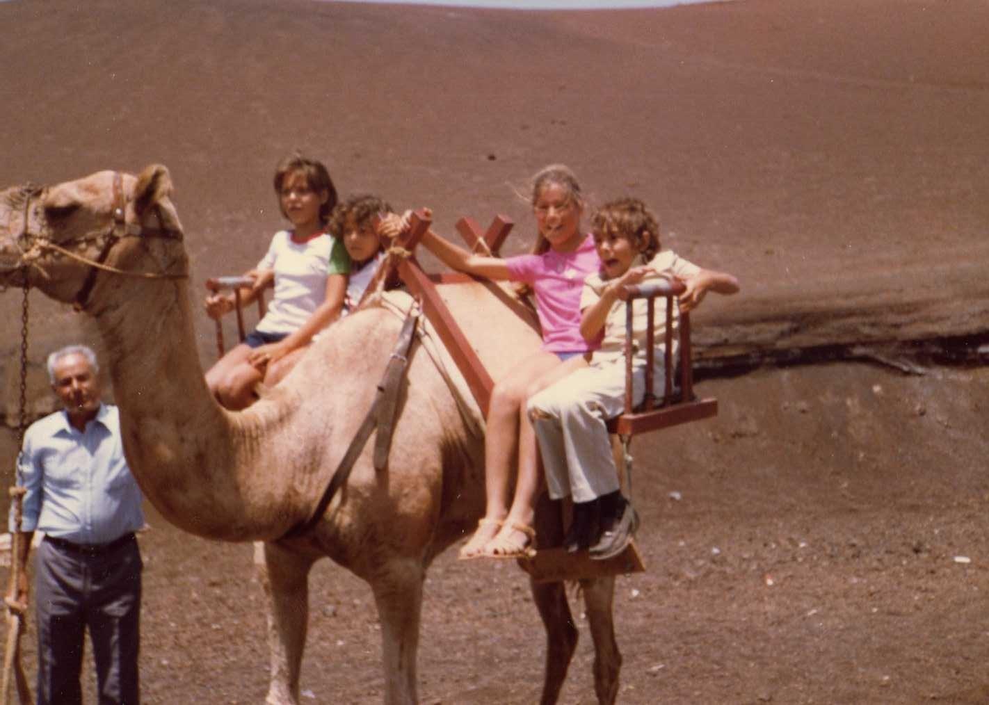 Primos en camello