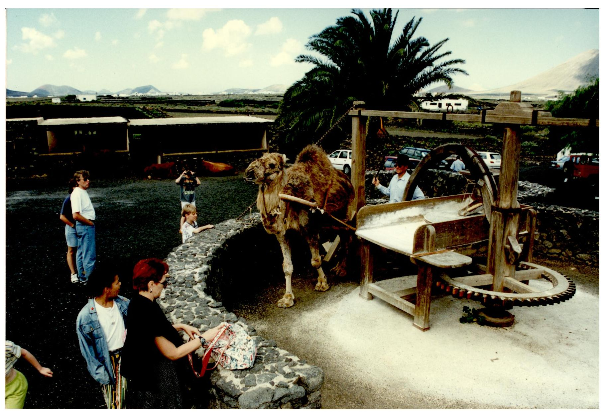 Tahona de la Casa-Museo del Campesino